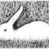 bunny-opticalillusion
